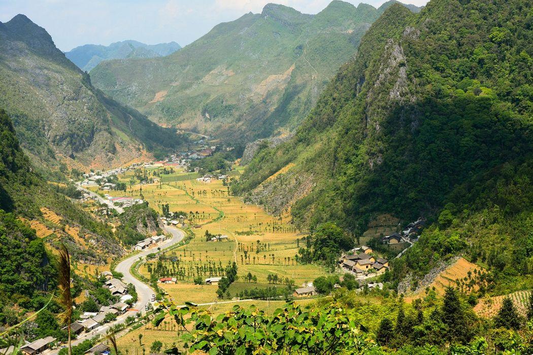 Thung lũng Sủng Là với những cánh đồng hoa tam giác mạch tuyệt đẹp