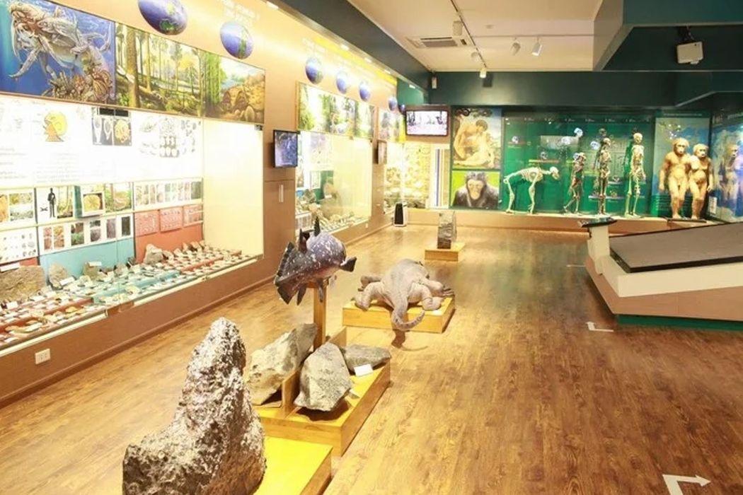 Khu trưng bày lịch sử của sự sống