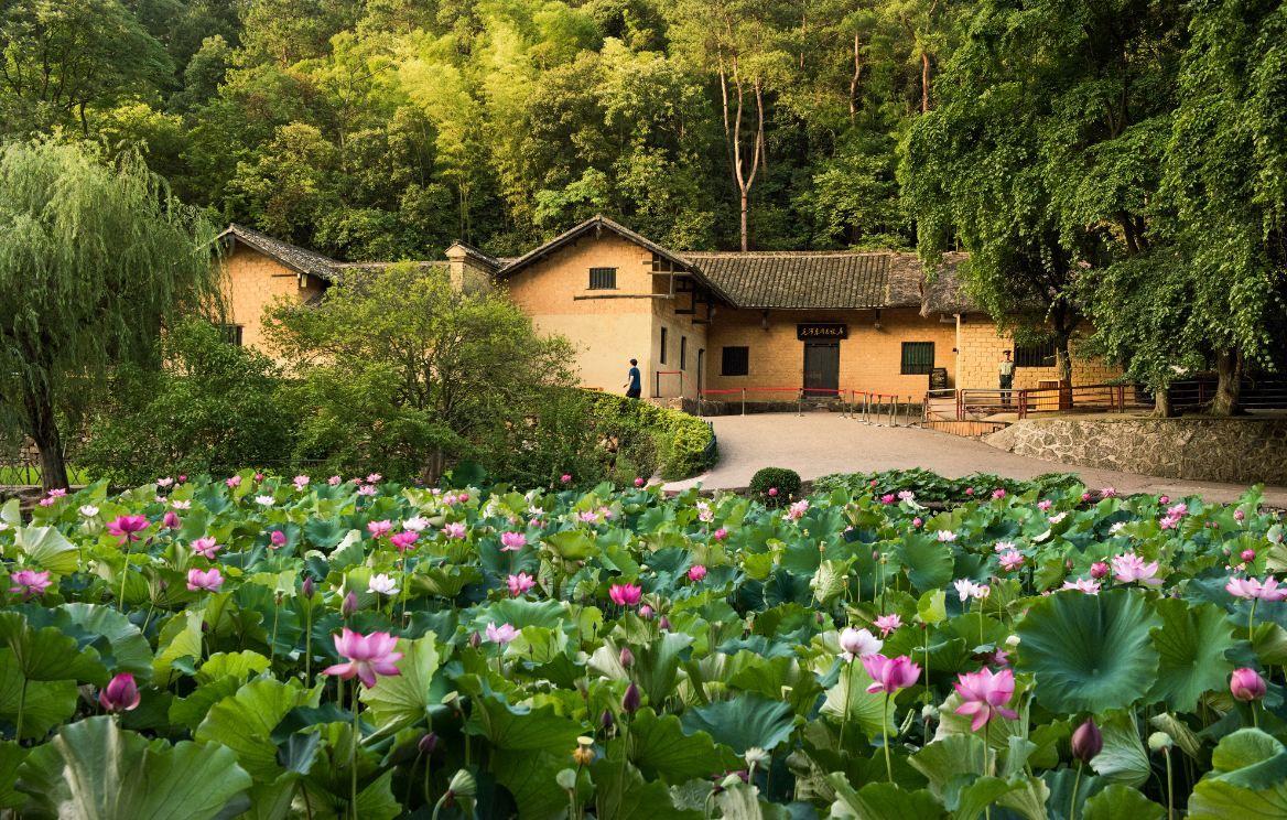 Dã ngoại núi Shaoshan