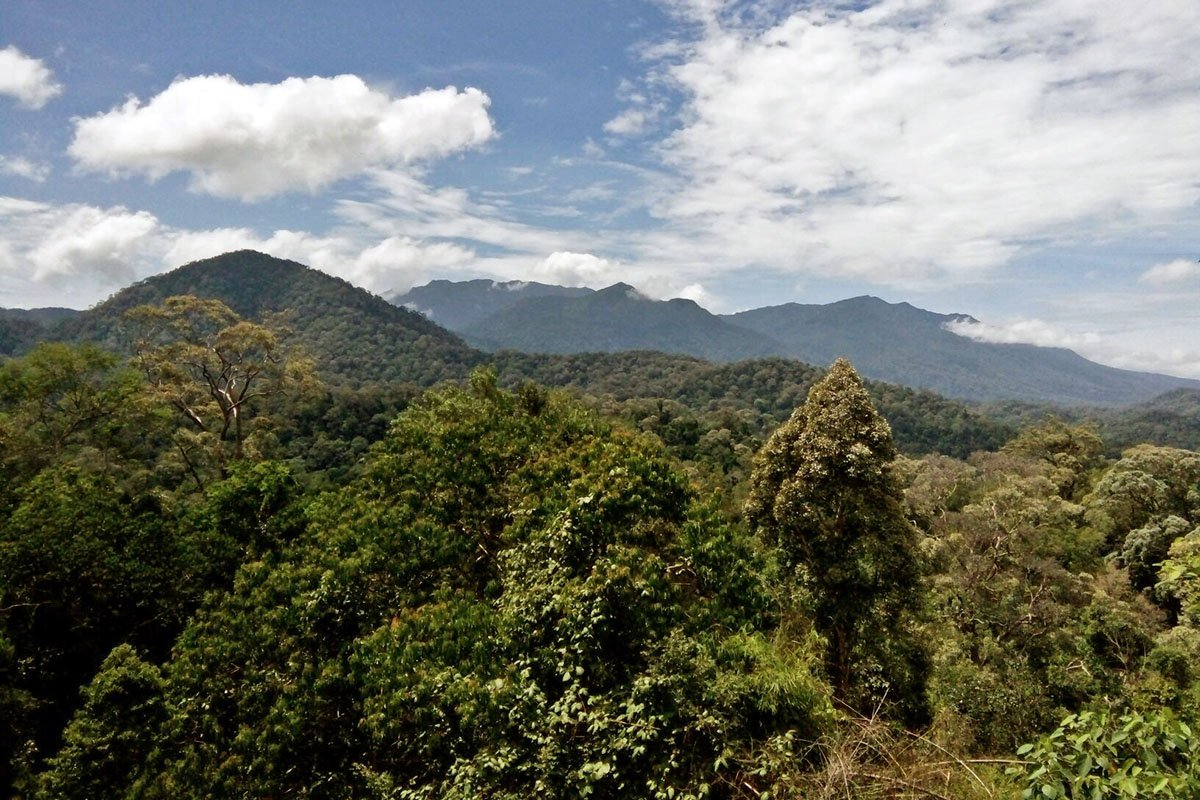 Núi Tahan