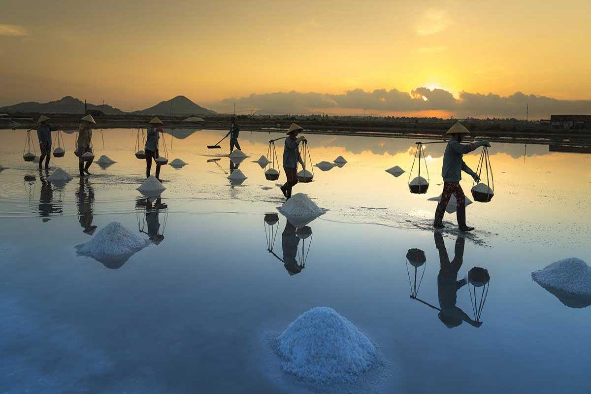 Đồng muối Hòn Khói
