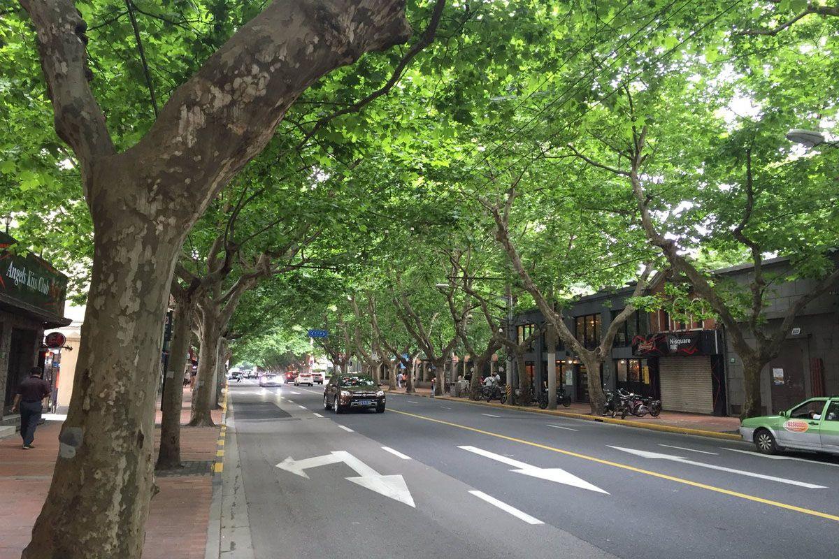 Đường Hengshan