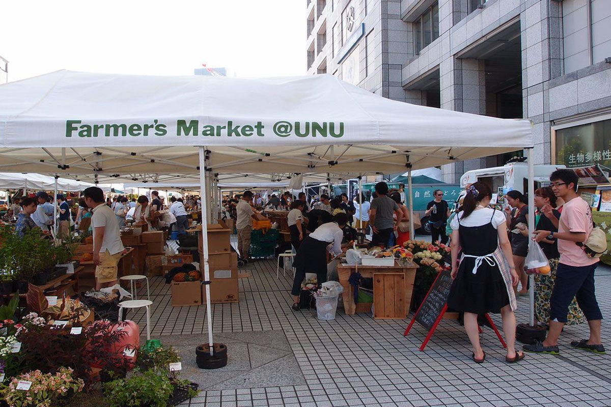 Chợ Nông sản UNU