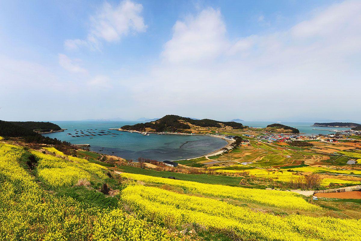 Đảo Cheongsando