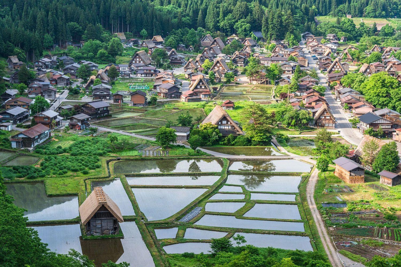Làng Shirakawa (Gifu)