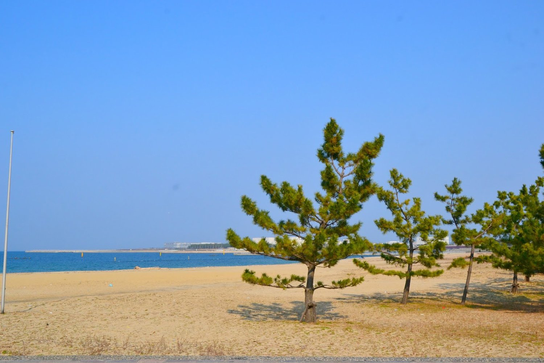 Bãi biển Nishikinohama