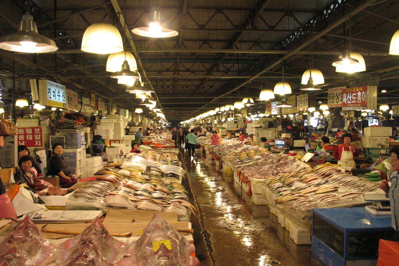 Thưởng thức hải sản tươi ngon tại chợ cá Noryangjin
