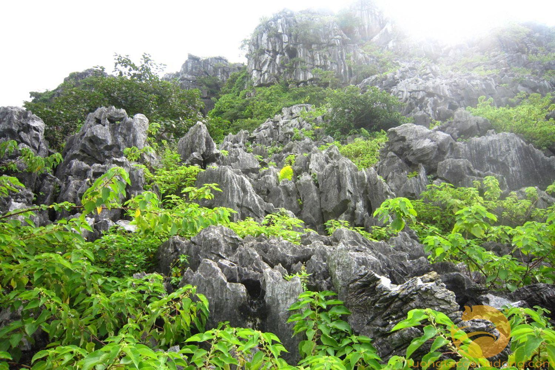 Núi Voi là một quần thể núi đá, núi đất nằm xen kẽ nhau