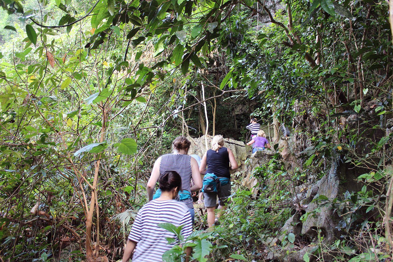 """Trải nghiệm hoạt động đi bộ """"trekking"""" ở vườn Cát Bà"""
