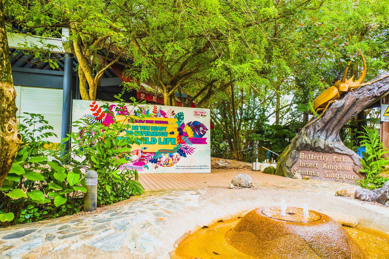 Butterfly Park & Insect Kingdom – Công viên bướm và Vương quốc côn trùng