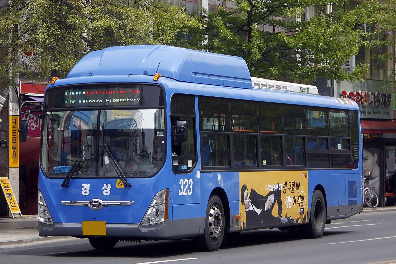 Xe bus tại Daegu