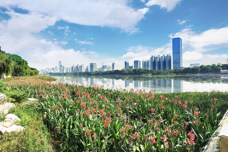 Mùa xuân Nam Ninh với phong thủy hữu tình
