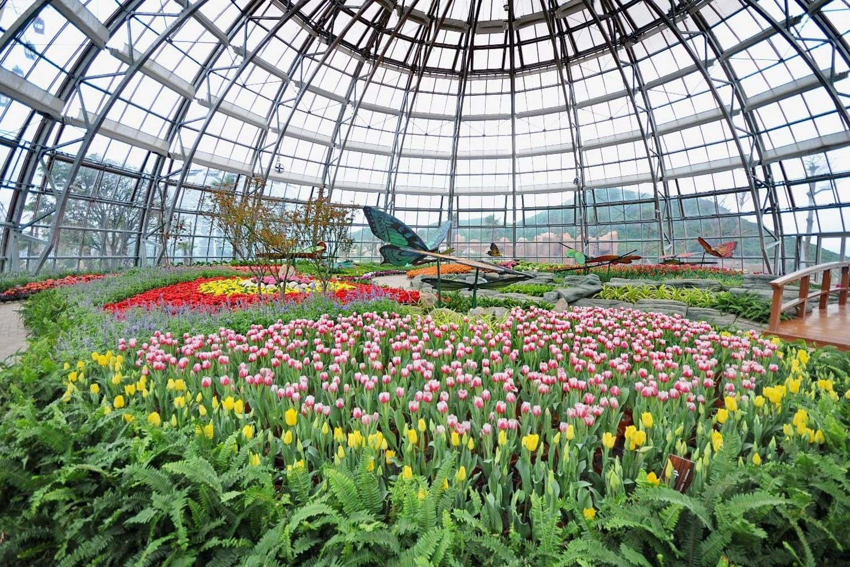 Vương quốc hoa hồng tại The World Garden