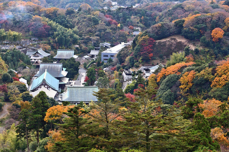 Thành phố Kamakura
