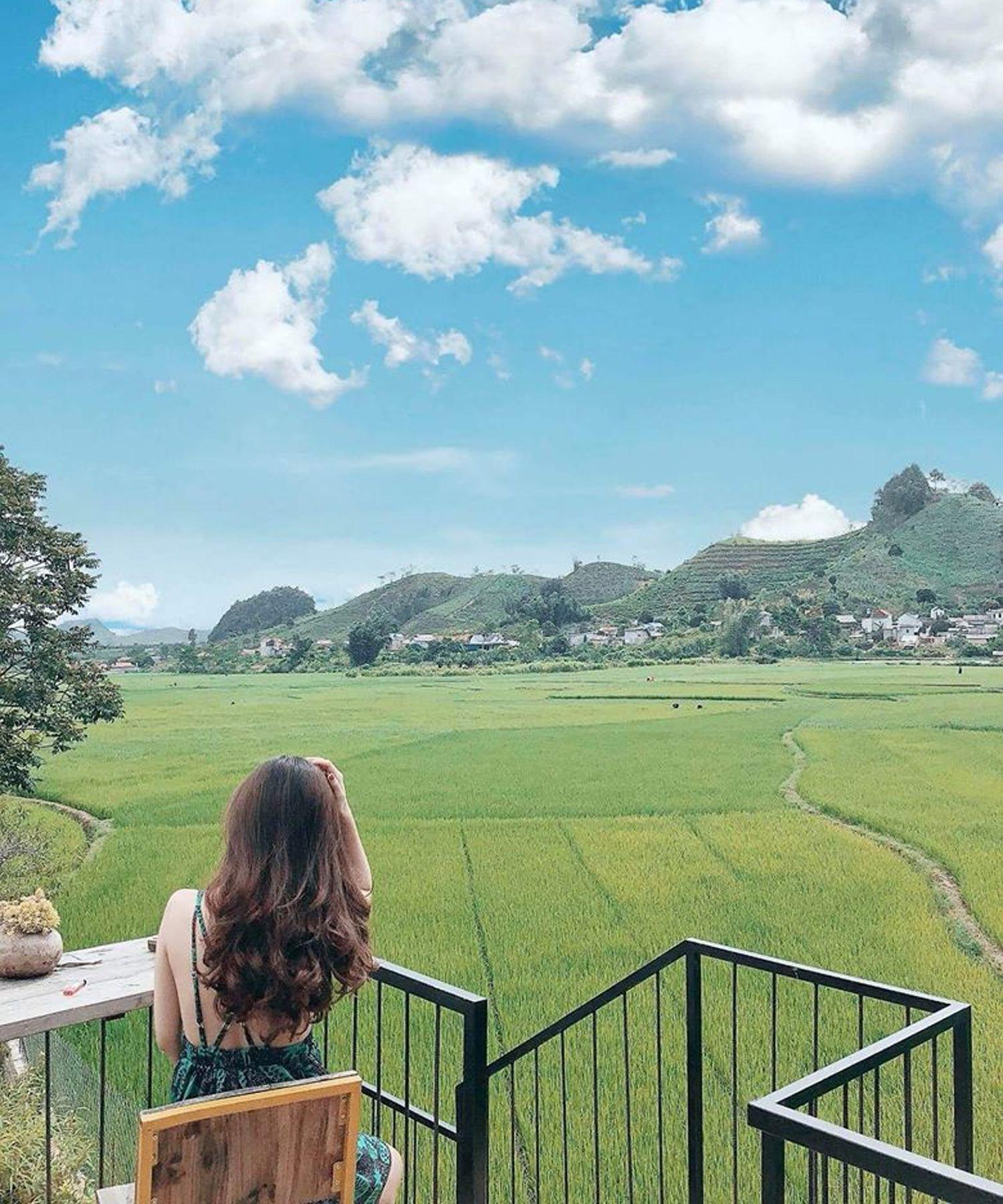 View ra cánh đồng bát ngát tại Savana Mộc Châu