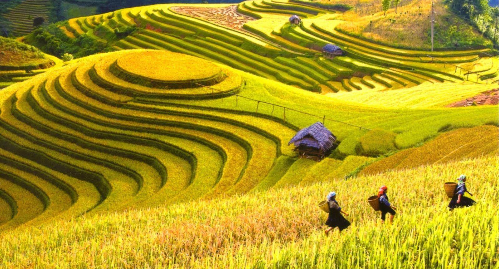 Hà Giang mùa nào cũng đẹp