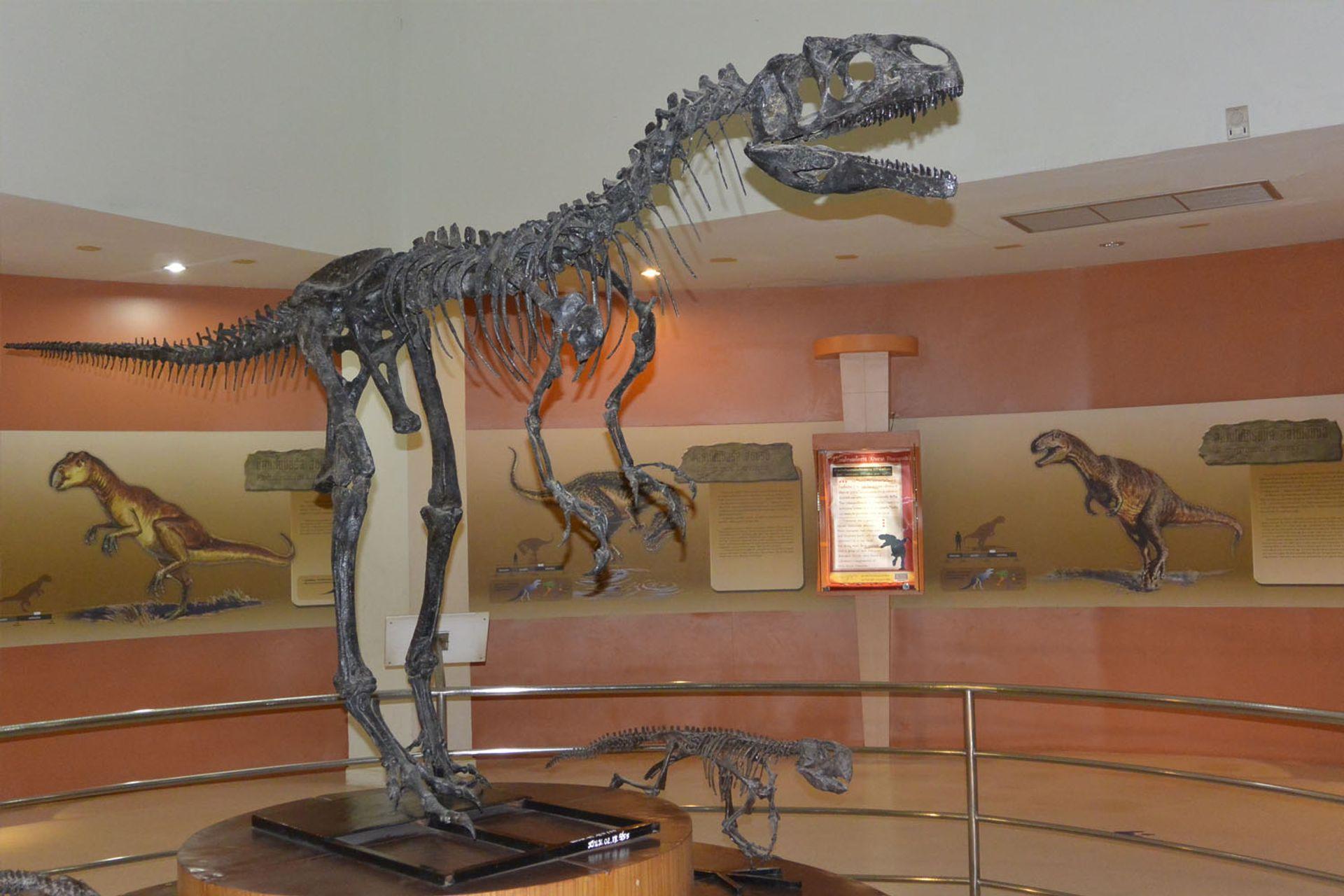 Bảo tàng hóa thạch Korat