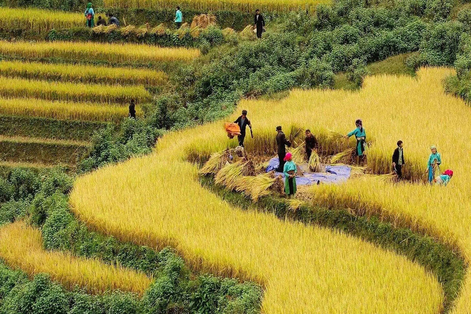 Tháng 8 đến tháng 9 ở Hà Giang