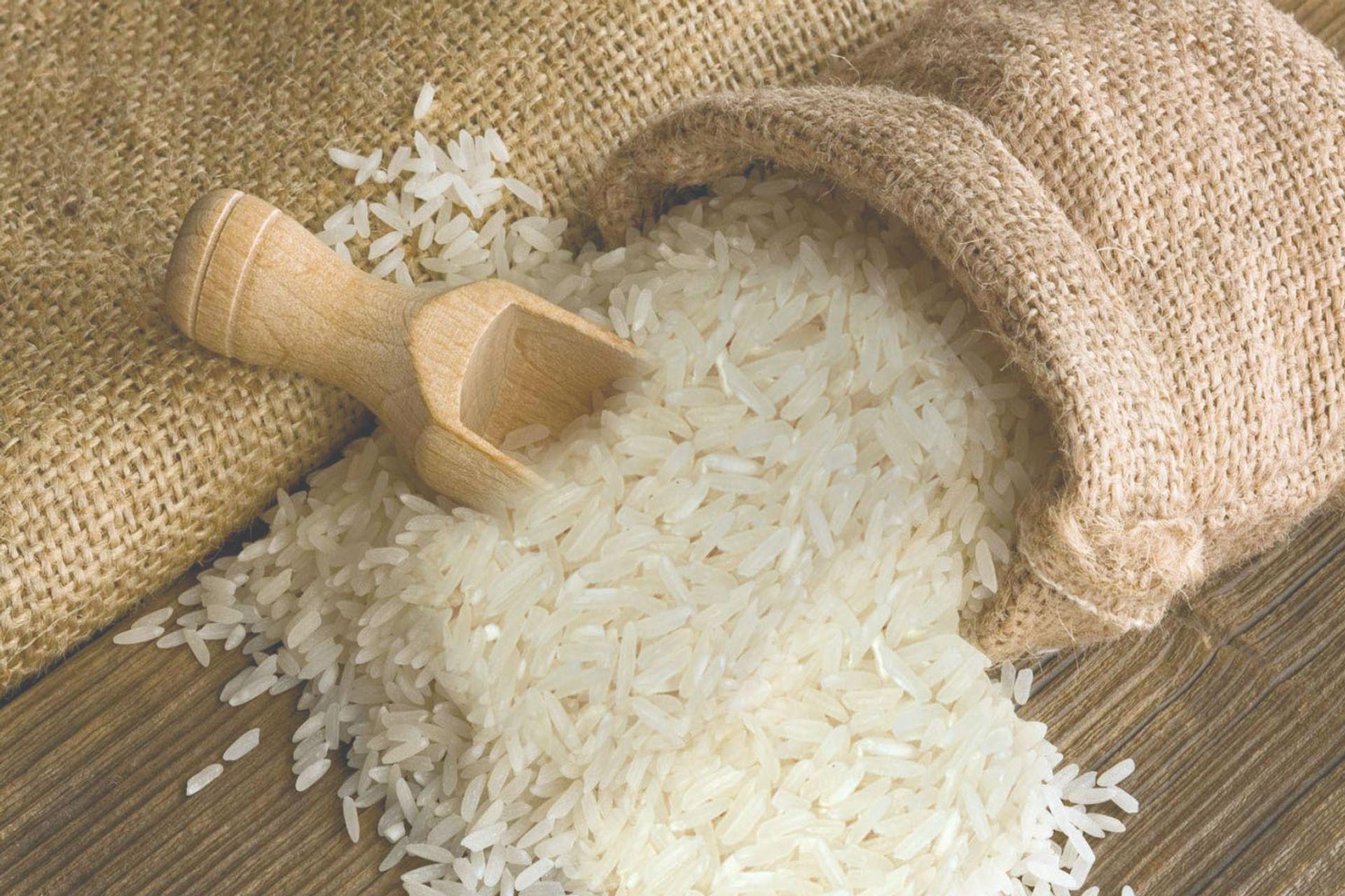 Gạo santan