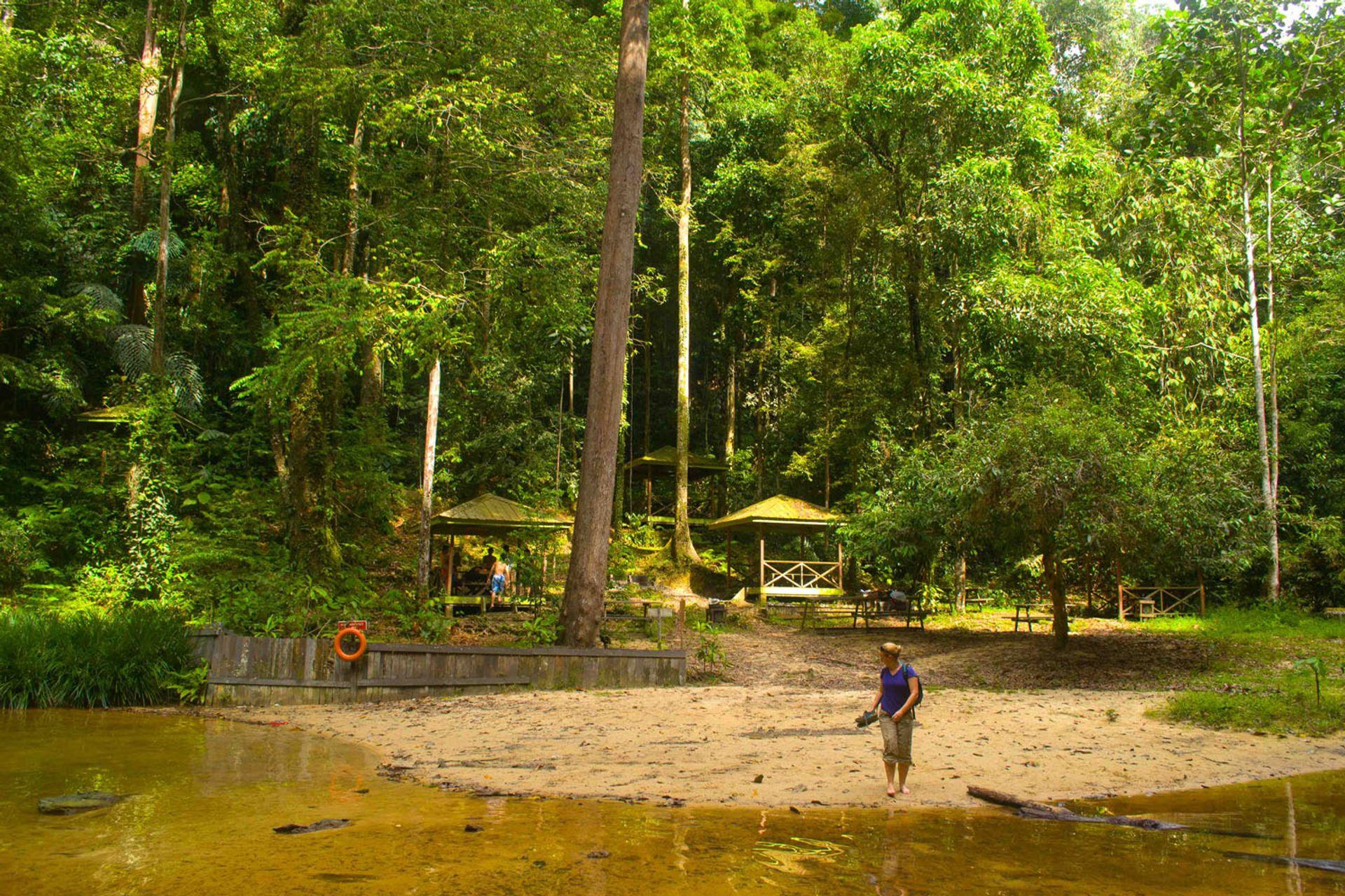 Công viên quốc gia Lambir Hills