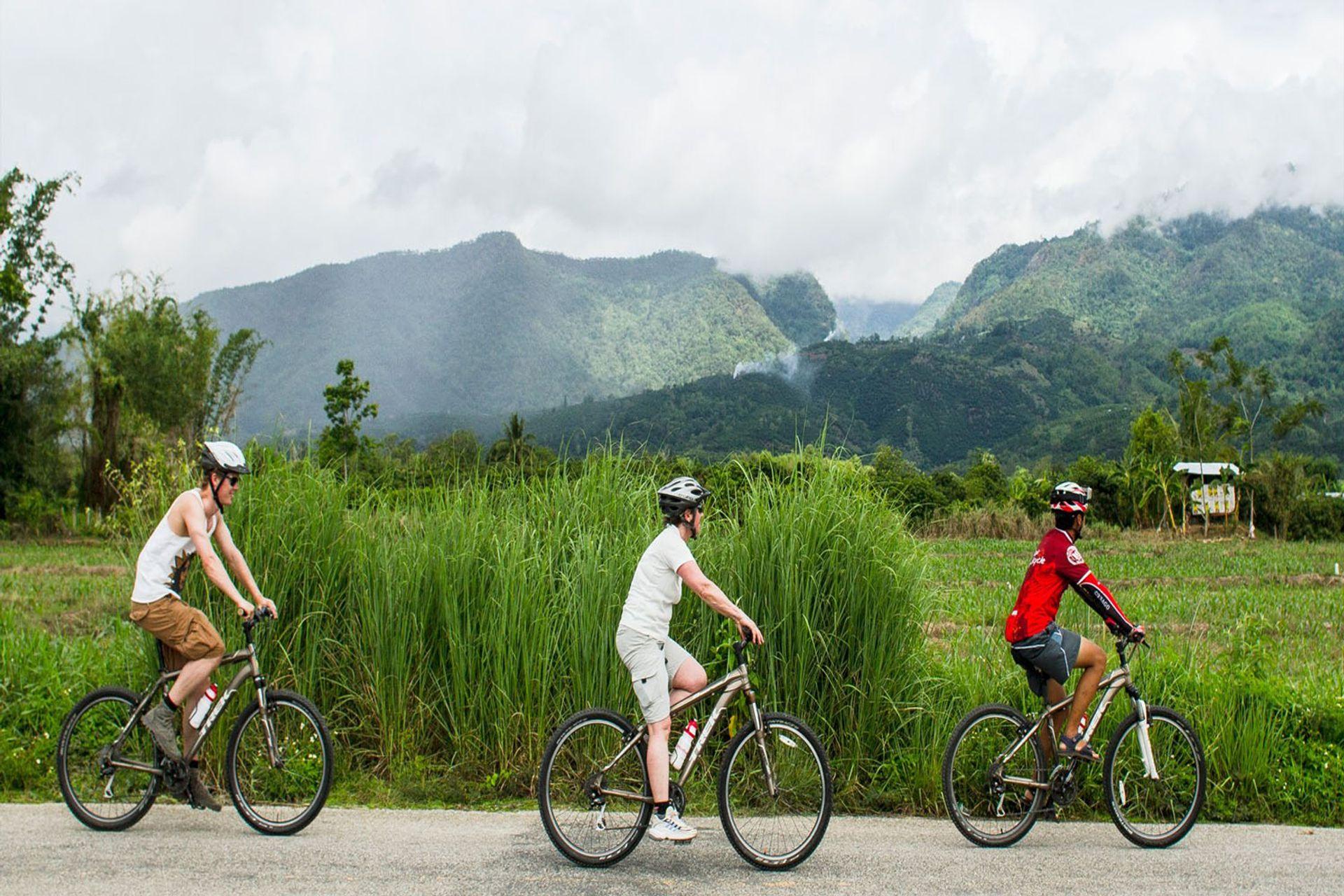 Đạp xe và thư giãn với khung cảnh nông thôn bình dị
