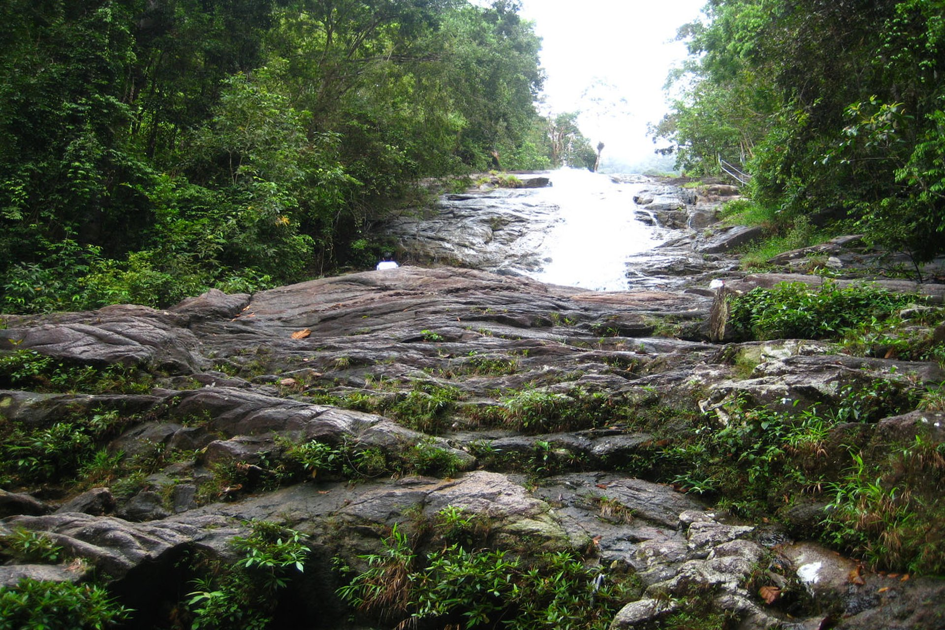 Công viên quốc gia Gunung Ledang