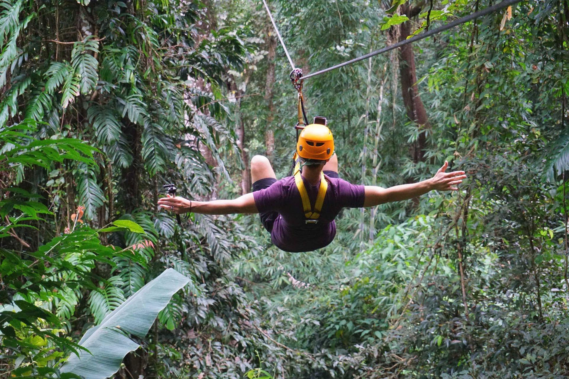 Gibbon Adventure