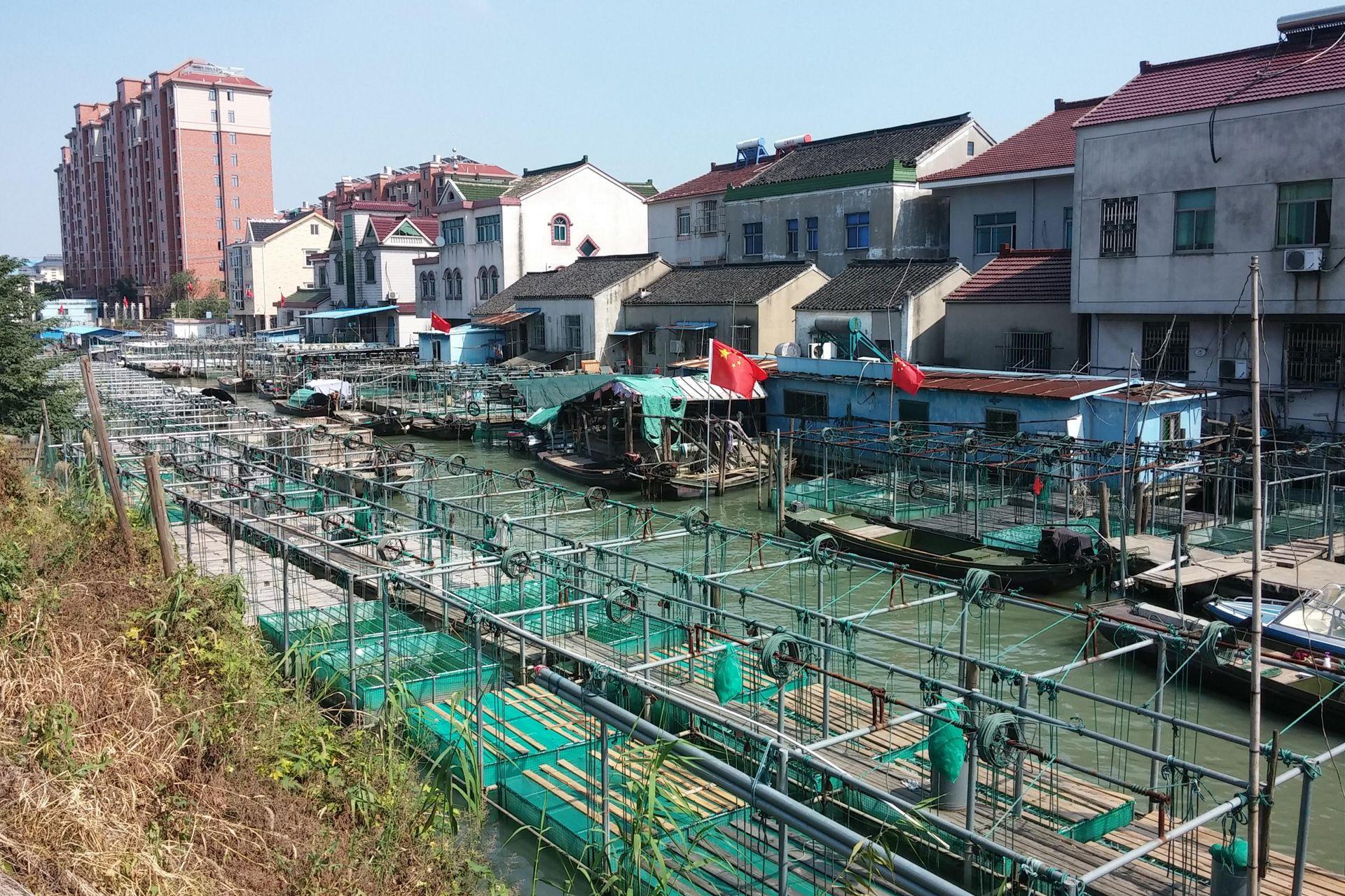 Quận Wu Jiang