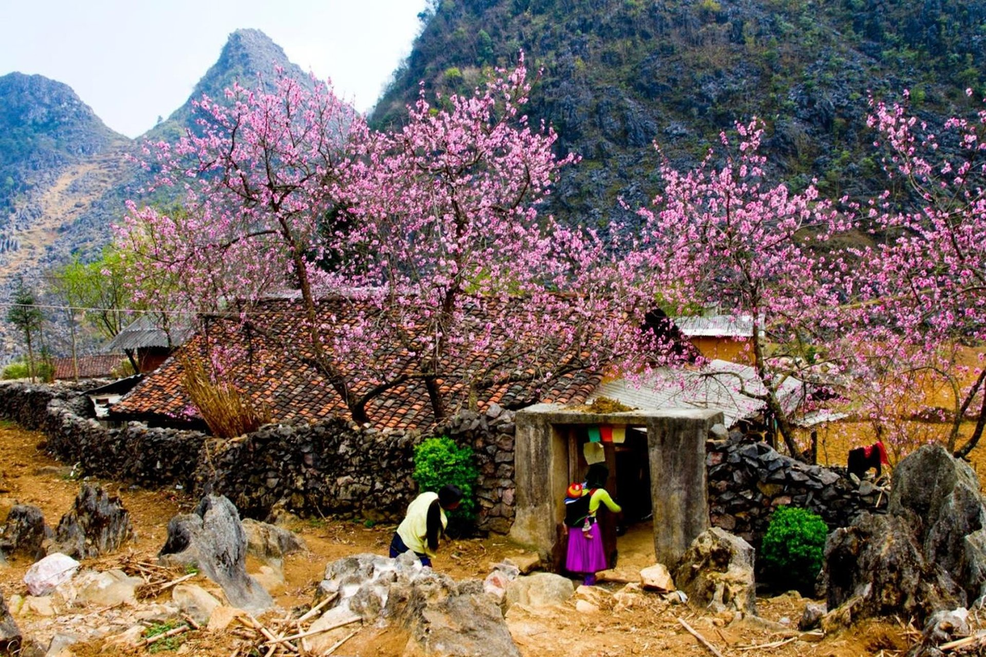 Tháng 1 đến tháng 3 ở Hà Giang