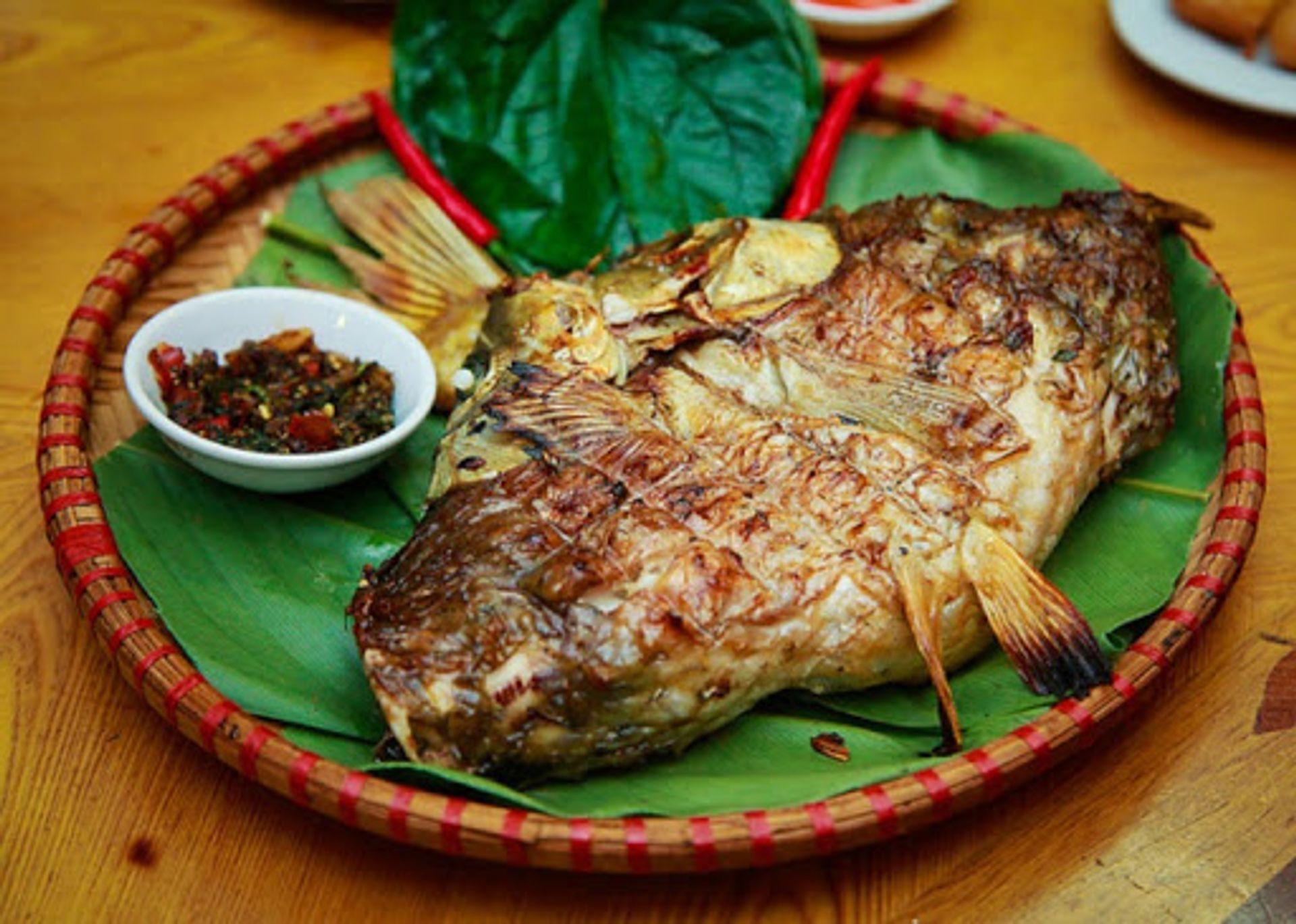 Cá sỉnh Nậm Thia