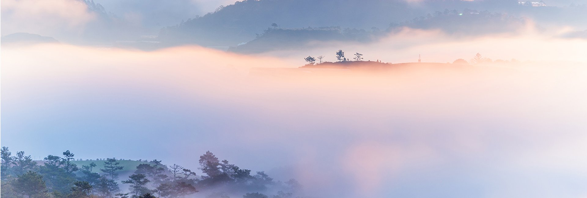Khám phá vẻ đẹp đồi Mộng Mơ, thành phố Đà Lạt