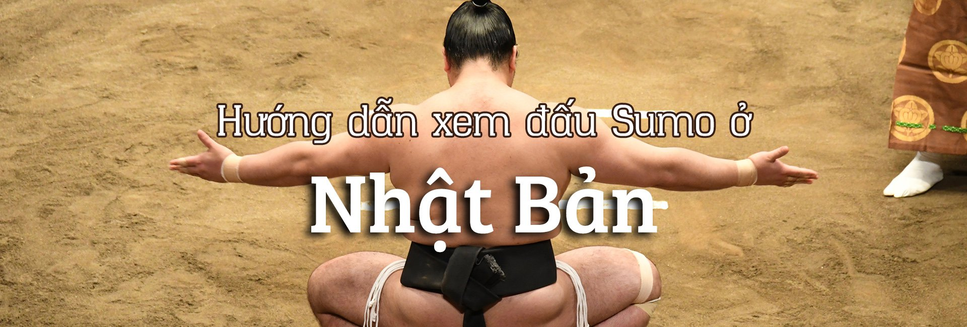 Đấu Sumo Nhật Bản: xem ở đâu và xem khi nào?