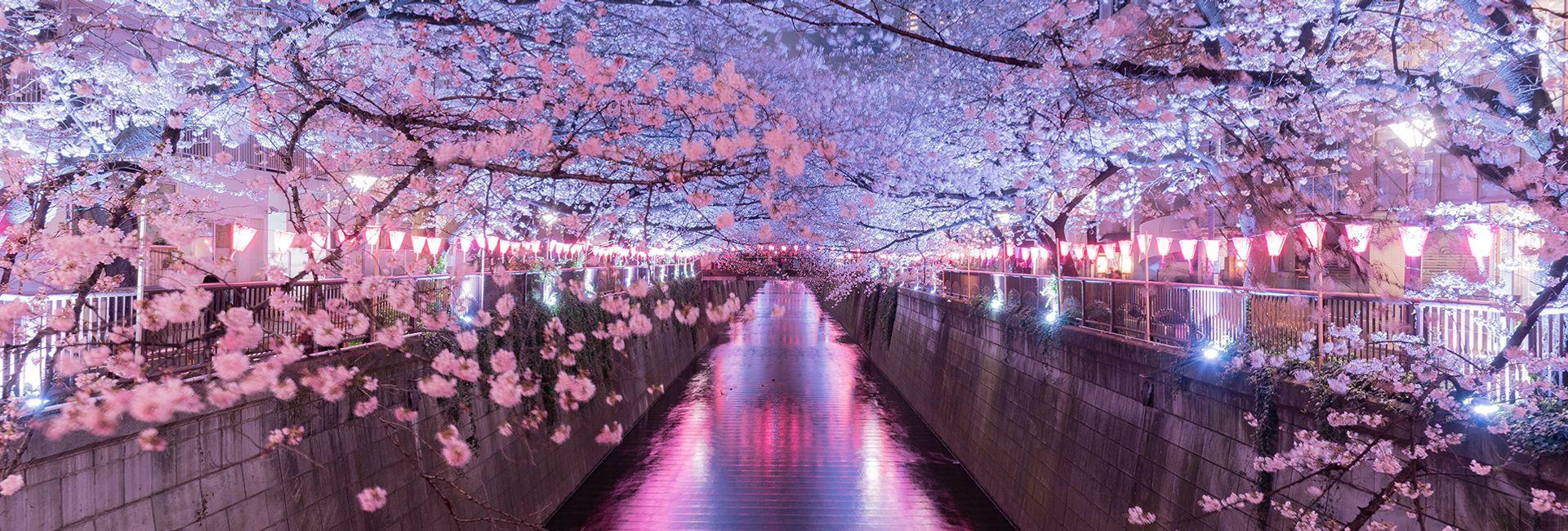Top 10 địa điểm tham quan hàng đầu ở Meguro, Tokyo