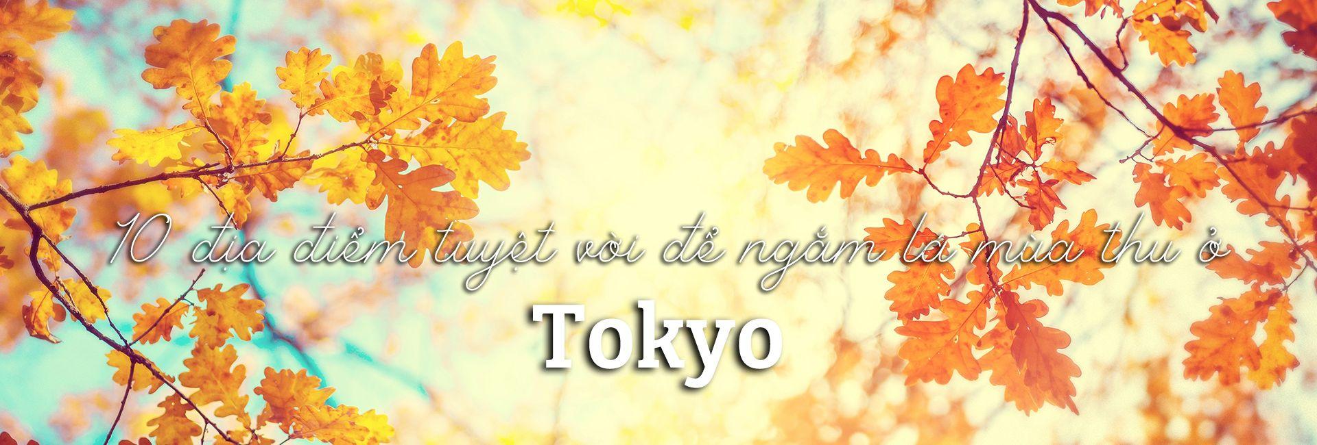 Top 10 địa điểm tuyệt vời để ngắm lá mùa thu ở Tokyo