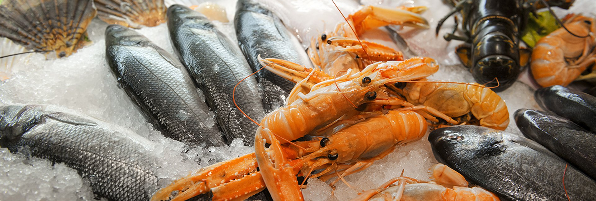 """""""Bí kíp"""" mua hải sản tươi ngon giá rẻ ở chợ Xóm Lưới, Vũng Tàu"""