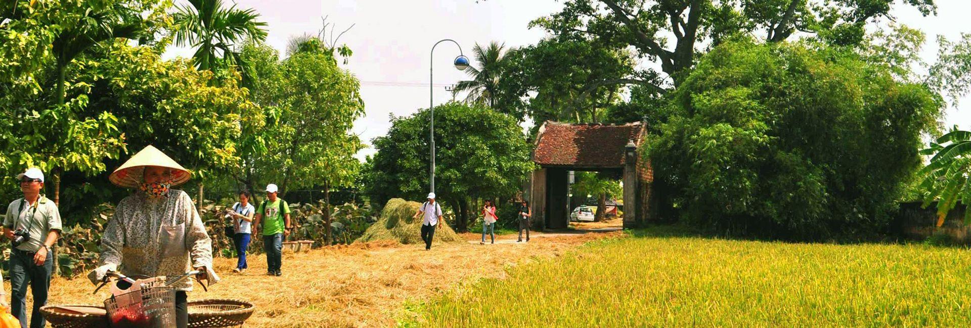 Làng cổ đường Lâm - Hướng dẫn du lịch chi tiết nhất