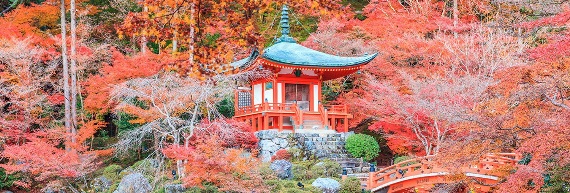 Hướng dẫn khám phá trọn vẹn Tokyo chỉ trong 2 ngày