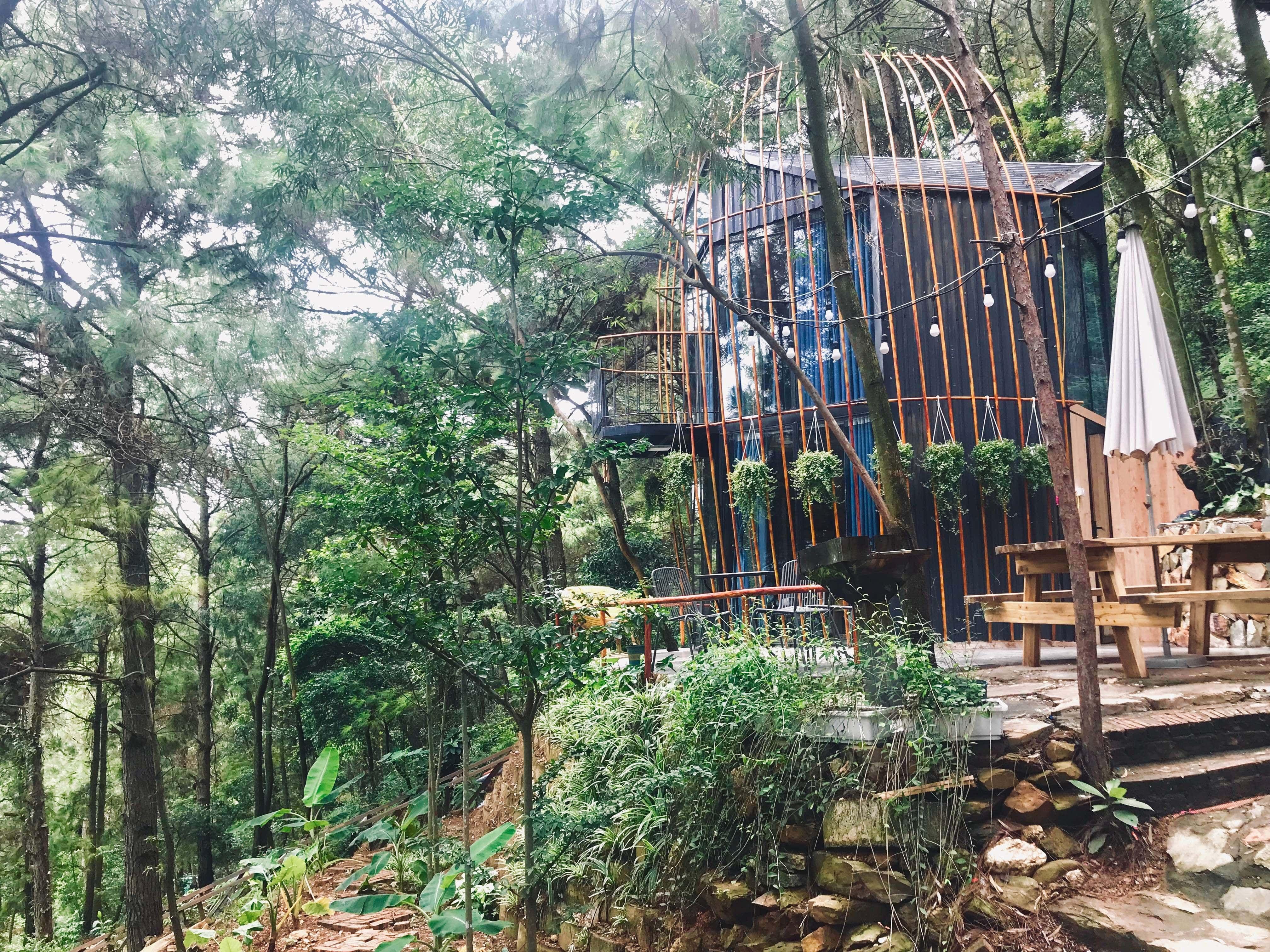 khong-gian-nha-to-chim-debay-villa-homestay-soc-son-ha-noi-01