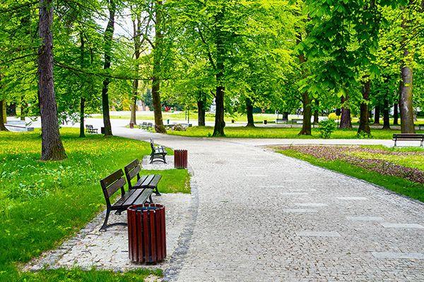 Hướng dẫn dã ngoại công viên Yên Sở trong 1 ngày