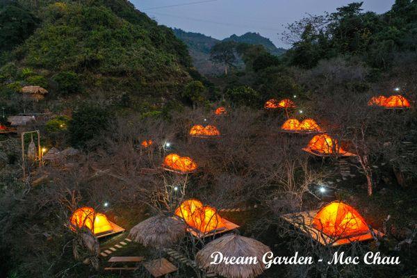camping dream garden moc chau homestay moc chau son la