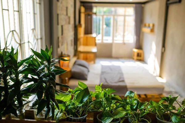 phong ngu may hostel homestay hai phong