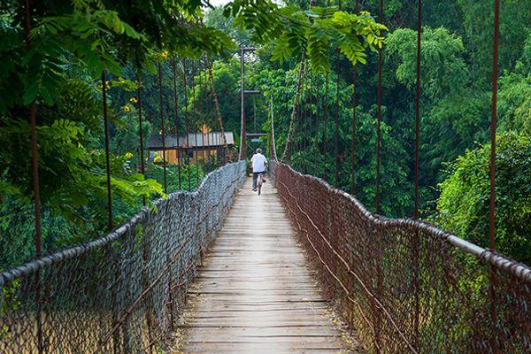 Top 12 trải nghiệm thú vị tại Battambang, Campuchia