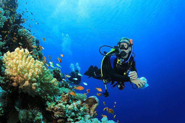 Lặn biển Đà Nẵng - Kinh nghiệm lặn an toàn, hiệu quả
