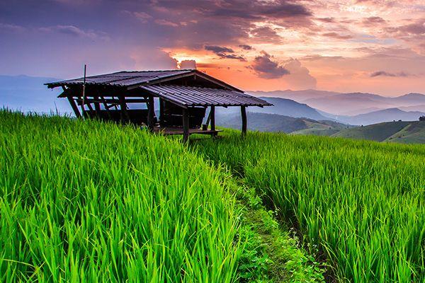 Top 11 địa điểm du lịch ở miền Bắc Thái Lan
