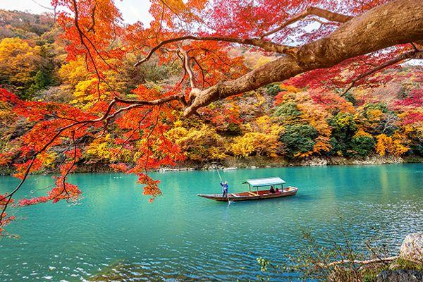 12 điều bạn cần biết trước khi đi du lịch đến Kyoto, Nhật Bản